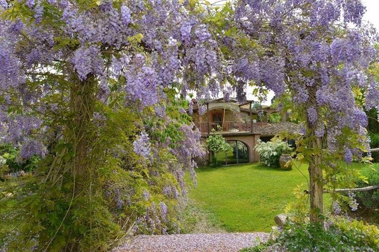 Creare un giardino fai da te progettazione giardini for Soluzioni per piccoli giardini