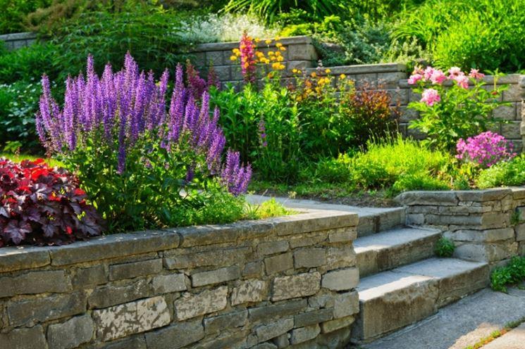 Progettare Il Giardino Da Soli : Come progettare un giardino da soli u2013 home visualizza idee immagine