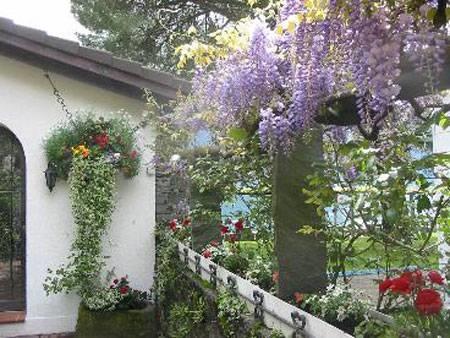 Giardini pensili progettazione giardini for Realizzazione giardini pensili