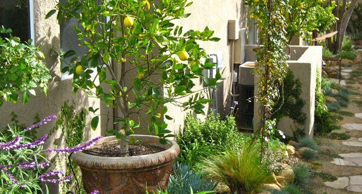 Piccolo spazio attrezzato a giardino