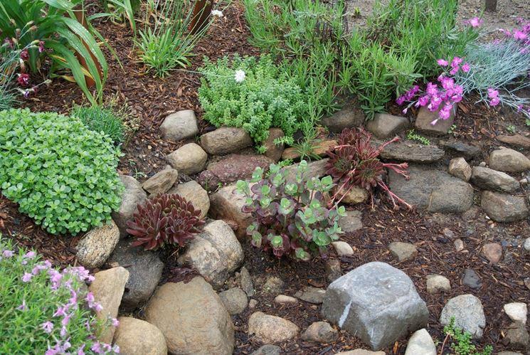 Giardini piccoli progettazione giardini come - Creare giardino roccioso ...