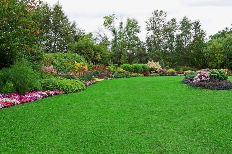 Un giardino molto fruibile: tanti fiori ma anche un grande prato.