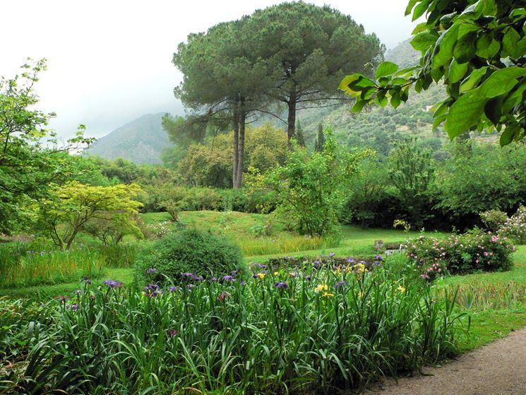 Giardini realizzazione progettazione giardini come for Laghetti nei giardini