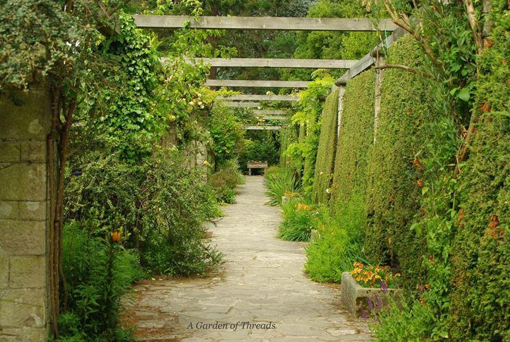 Fuga prospettica in giardino
