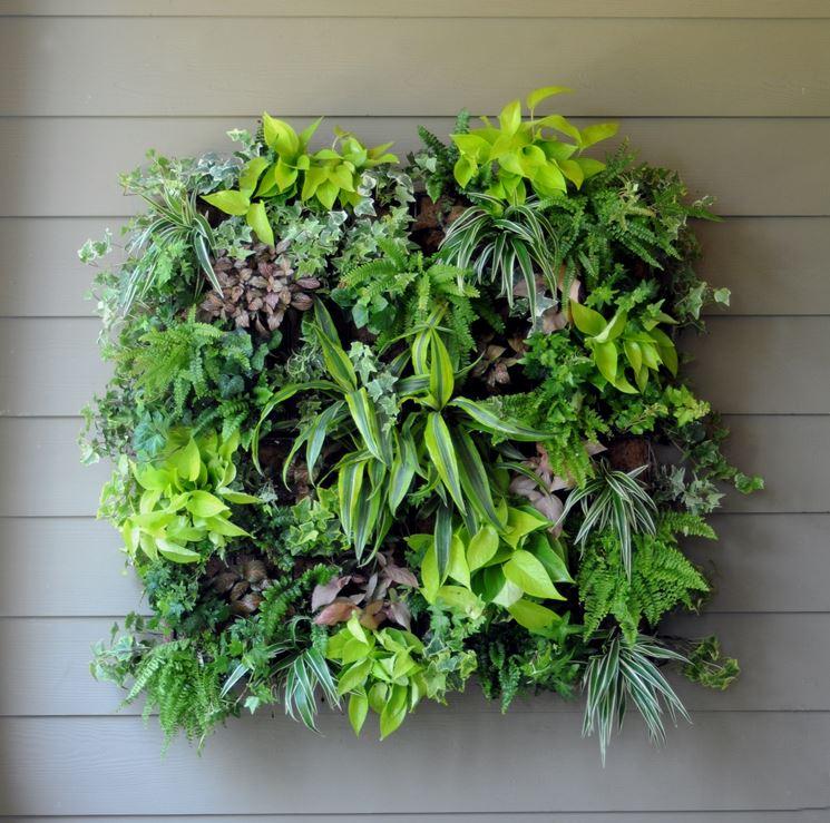 Giardini verticali realizzazione progettazione giardini - Pannelli per giardini verticali ...