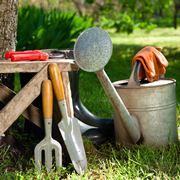 Esempio di progetto di giardino online