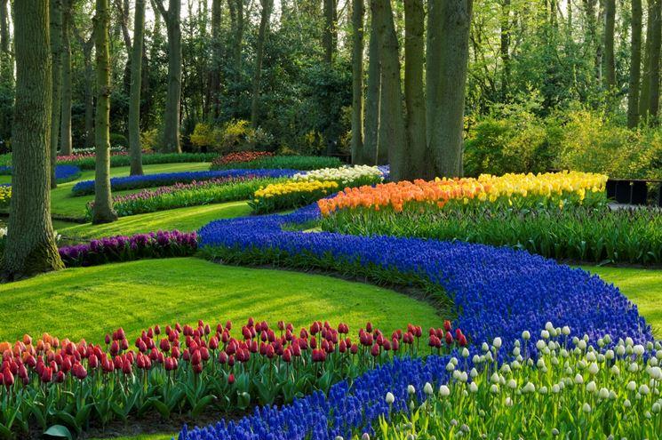 Giardino online progettazione giardini realizzazione - Progetto giardino piccolo ...