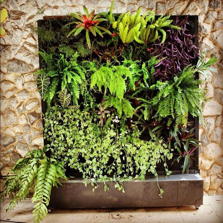 giardino verticale fai da te - progettazione giardini - giardini
