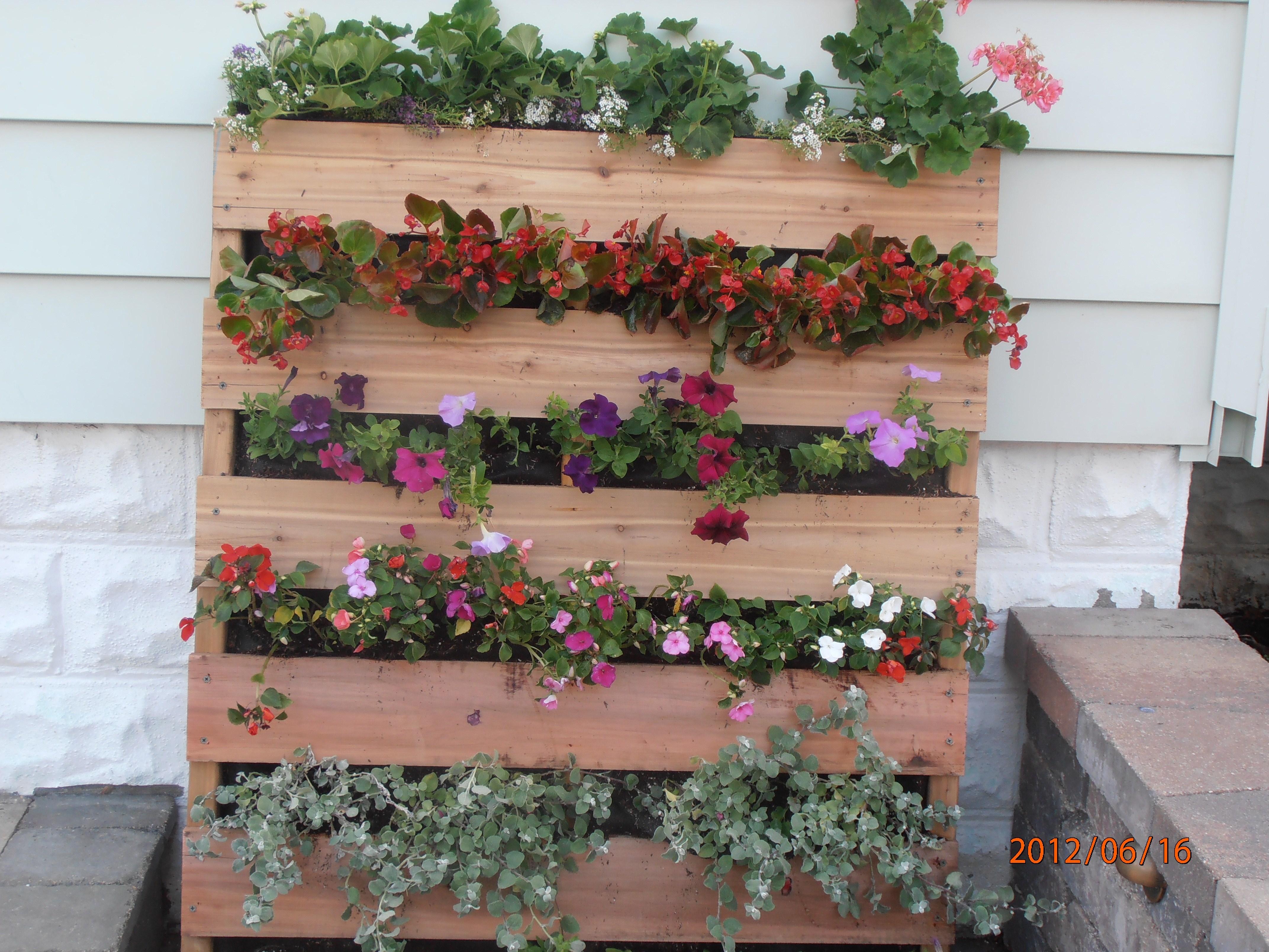 Giardino verticale fai da te progettazione giardini - Giardino d inverno fai da te ...