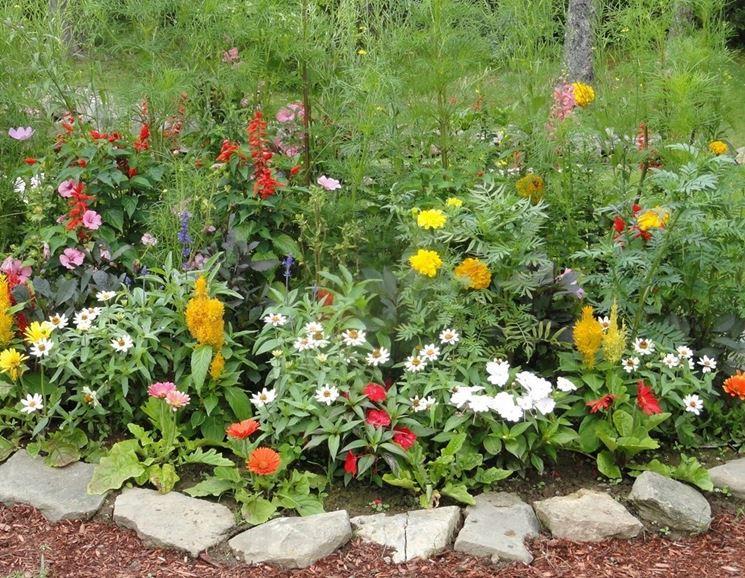 fiori da giardino giardino fiorito : ... il giardino - progettazione giardini - Idee per realizzare il giardino
