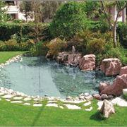 Progettazione giardini con acqua for Laghetti nei giardini