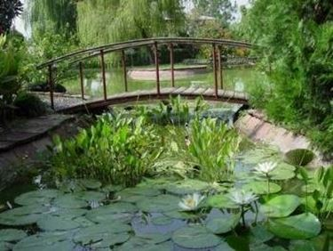Laghetti d 39 acqua progettazione giardini - Laghetti da giardino in cemento ...