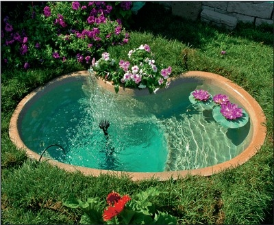 Laghetti d 39 acqua progettazione giardini for Immagini di laghetti artificiali