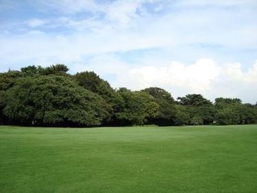 progettazione giardino inglese