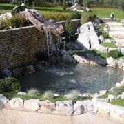 progettazione giardino zen