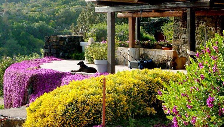 Realizzare giardini progettazione giardini come - Giardini mediterranei ...