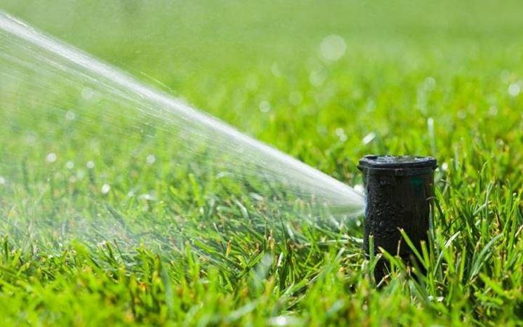 Irrigazione giardino a getto d'acqua