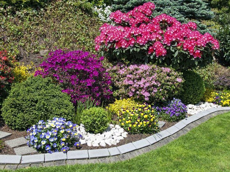 Piante fiorite in giardino