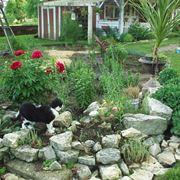 Sassi da giardino