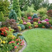 Il giardinaggio