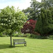 Una piccola oasi in giardino