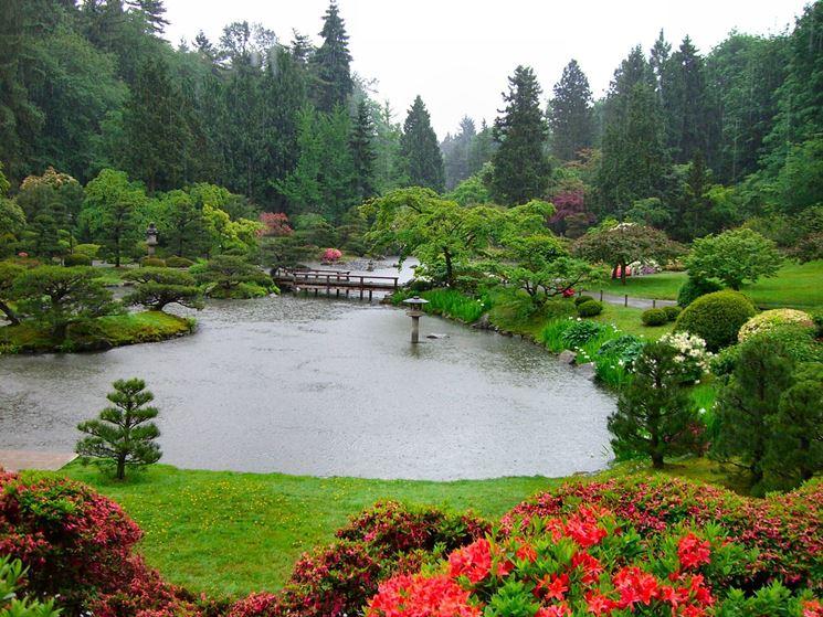 Alberi di varie forme e dimensioni in un grande giardino
