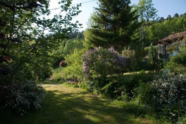 Alberi fioriti da giardino modelos de casas for Alberi da piantare in giardino