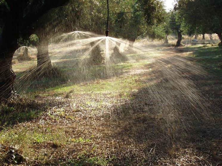 Sistema irrigazione