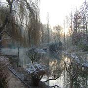 Il giardino che ispirò Monet