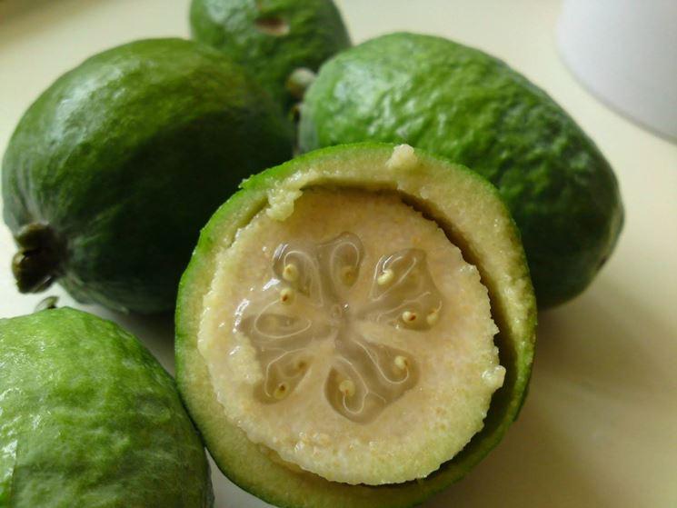 Feijoa, frutto
