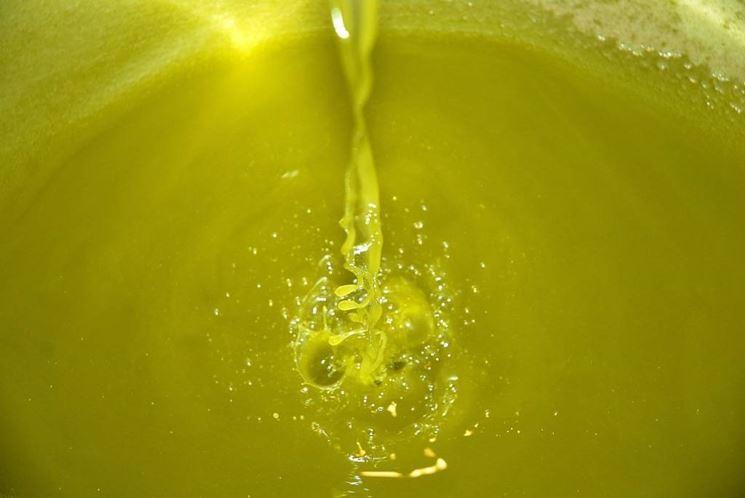 spremitura dell'olio d'olio d'oliva