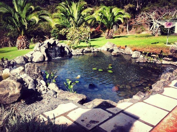 Costruire un laghetto piante acquatiche come costruire for Kit laghetto da giardino