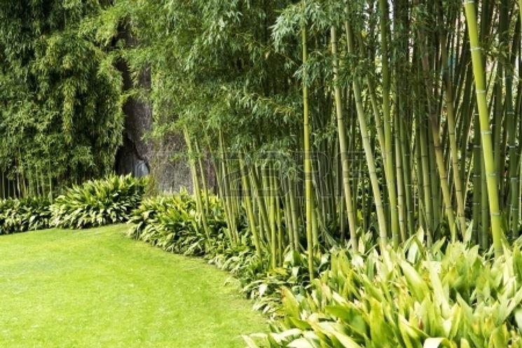 Giardino decorato con canne di bamb�