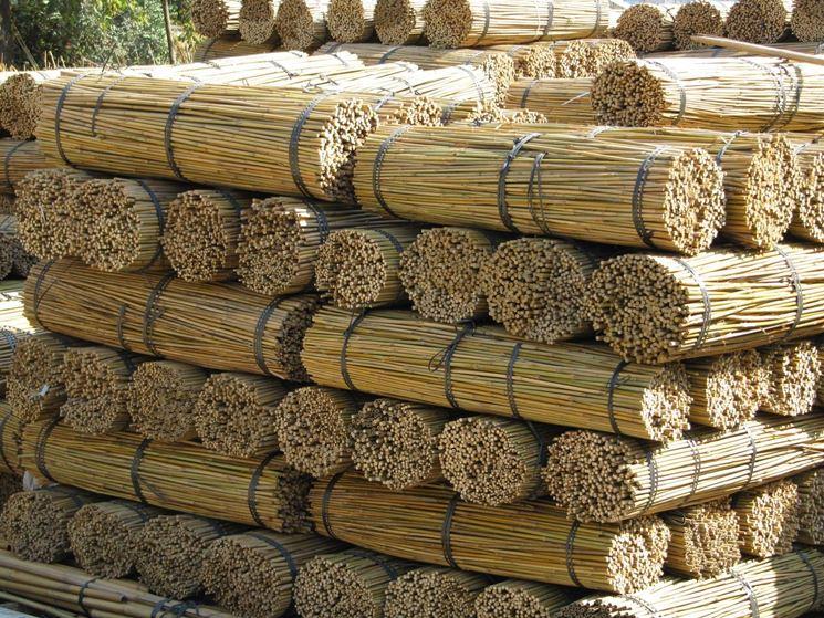 Stoccaggio delle canne di bamboo