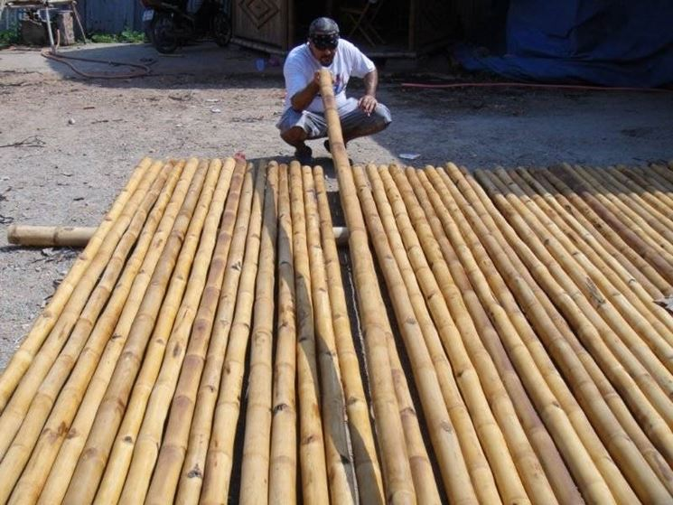 Lavorazione canne di bamboo