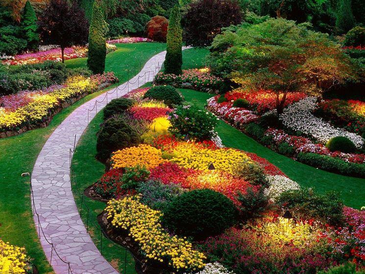Fiori giardino piante da giardino come scegliere i for Piante da giardino con fiori perenni