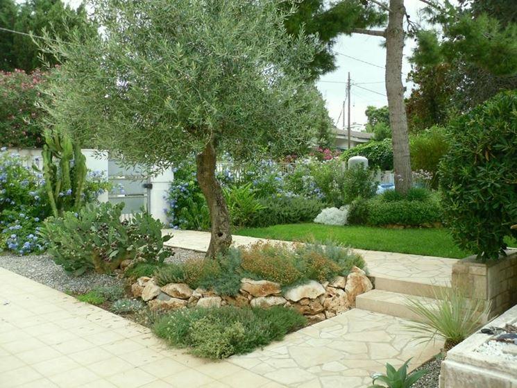 Fiori giardino piante da giardino come scegliere i fiori da giardino - Piante invernali da giardino ...