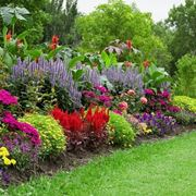 giardino a pieno sole