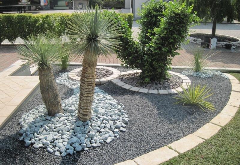 Aiuole piante grasse piante grasse aiuole piante for Piante grasse ornamentali