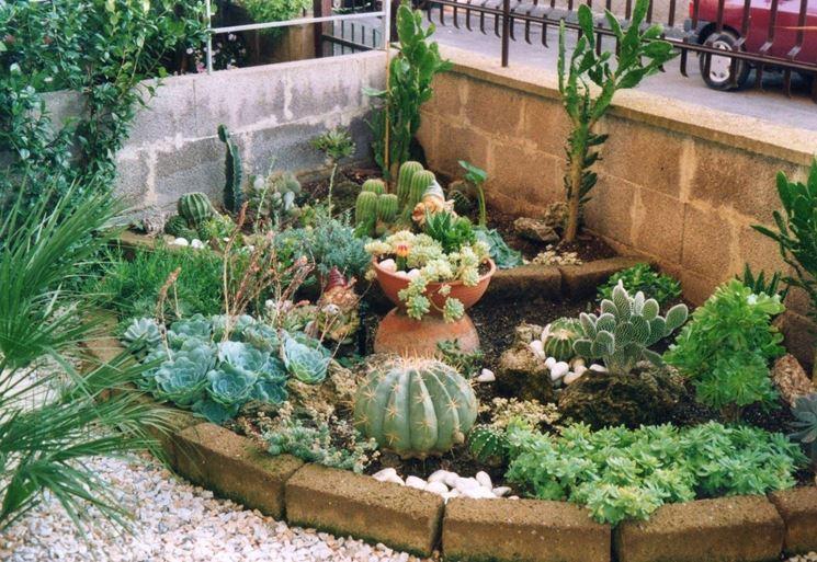 Ben noto Giardini piante grasse - Piante Grasse - Realizzazioni con le  BY44