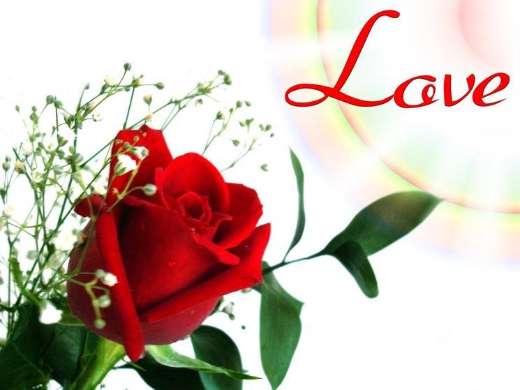 immagine di rosa rossa sui biglietti d'amore