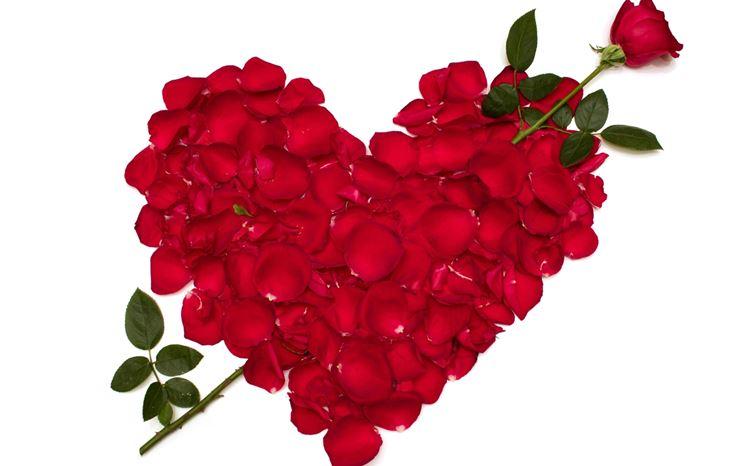 immagine di un cuore di petali di rose rosse