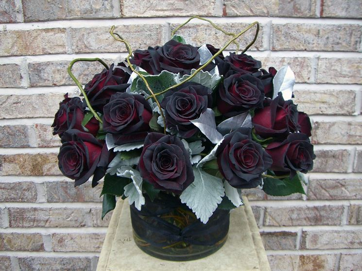 Composizione di Rose Black Baccarat