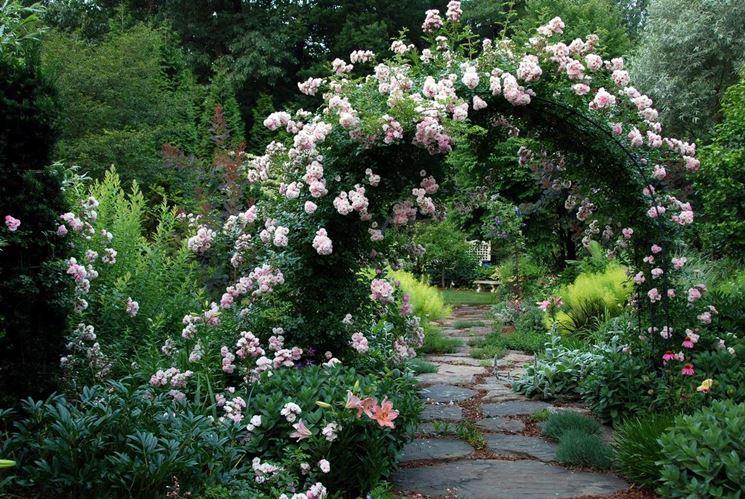 Pergolato realizzato con le rose