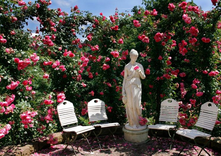 Giardino di rose con la statua della dea Venere