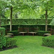Siepi geometriche in un giardino all�italiana