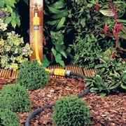 Irrigazione siepe