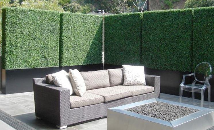 Siepi da mettere in terrazzo siepi siepi da balcone - Siepi ornamentali da giardino ...
