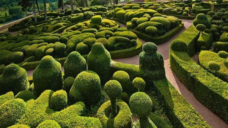 Artistico giardino di bosso