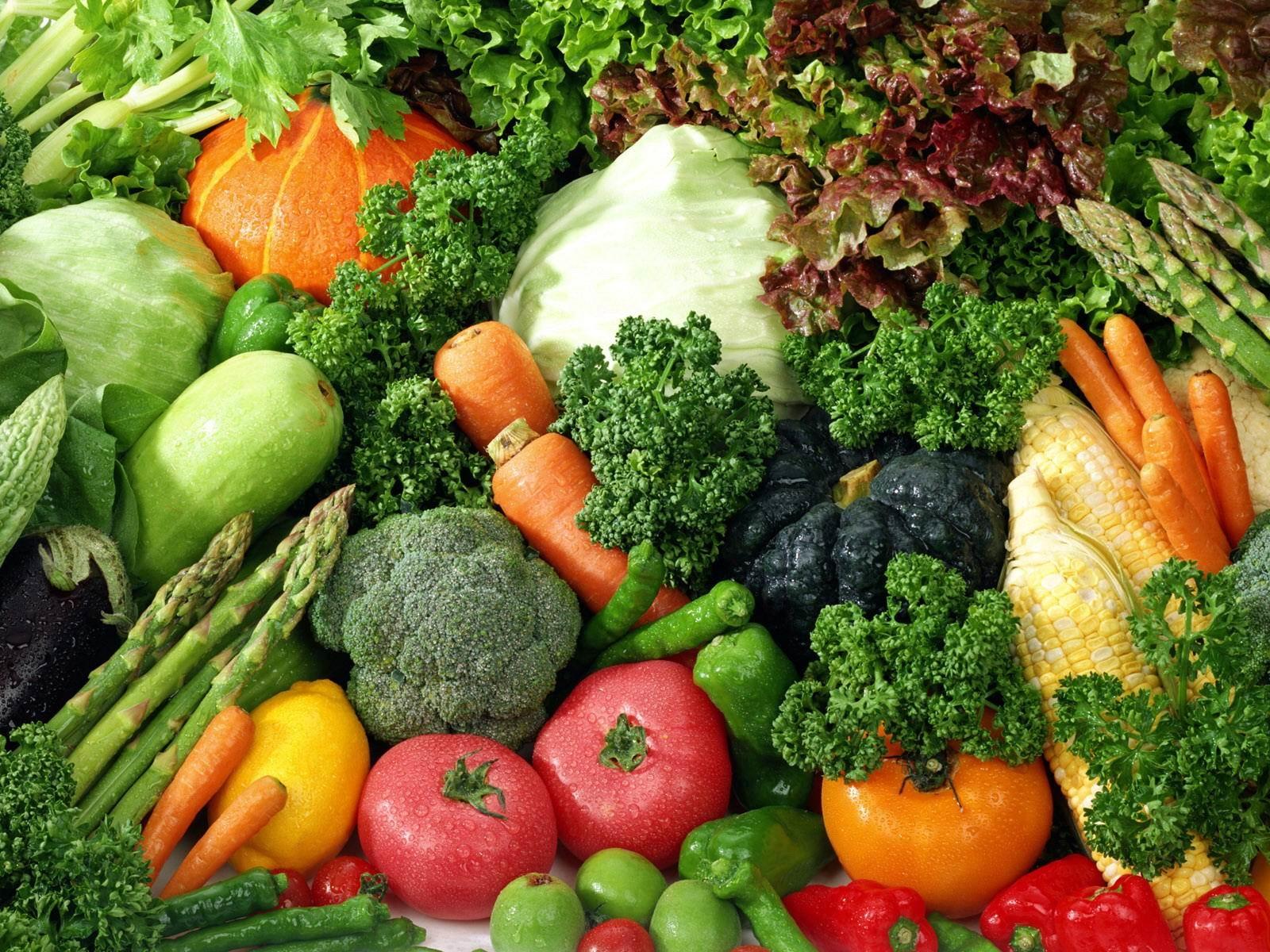 coltivazione ortaggi